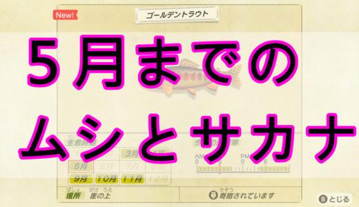 【あつまれどうぶつの森】【北半球】5月までのムシ・サカナ